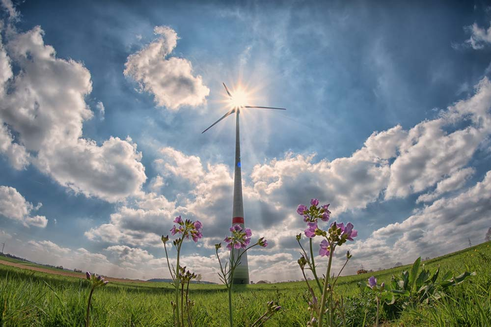 Five Common Features of Energy Efficient Windows